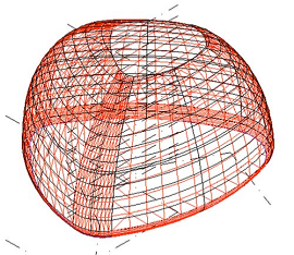 Structural model of timber shell